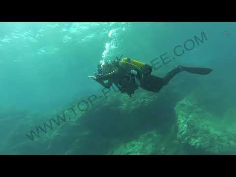 Chapitre 2 - La Respiration en Plongée à travers les Neurosciences - FR English Subtitles FULL HD
