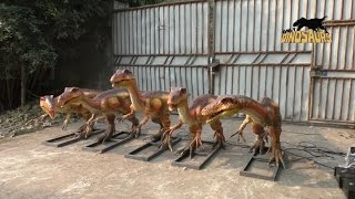 Customized Animatronic Coelophysis Dinosaur