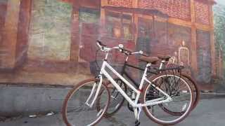 Priority Bicycles---Low-maintenance Sweethearts