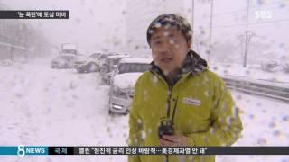 50cm '눈폭탄' 동해안 강타…아수라장 된 도로 / SBS