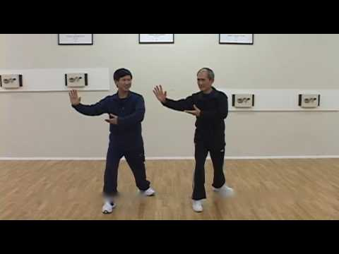 Yang Family Tai Chi Q&A Golden Rooster, Fancy Wrists