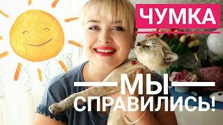 Кот не ест и не пьет...   Но мы СПРАВИЛИСЬ! История выздоровления кота от вируса чумки