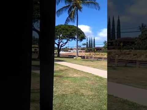 Maui fire