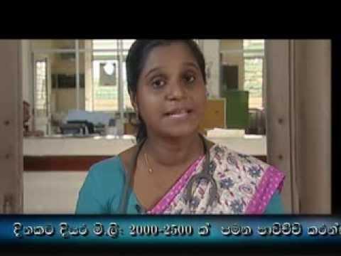 Dengue Documentary 2012