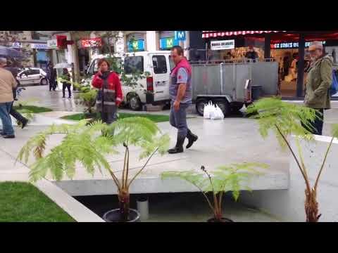 Plantas en la Praza de Galicia para prevenir las caídas