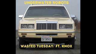 Underwater Robots   Wasted Tuesday