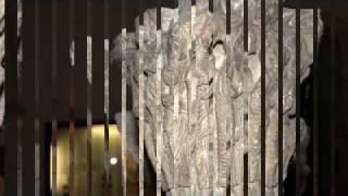 Geobiologie : Abbaye saint Philibert Tournus eglise romane