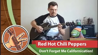 Red Hot Chili Peppers - Don't Forget Me Californication!