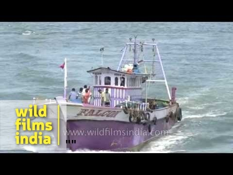 Fishing boat of the kind that brought terrorists to India