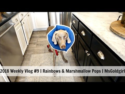 2018 Weekly Vlog | Rainbows & Marshmallow Pops | MsGoldgirl