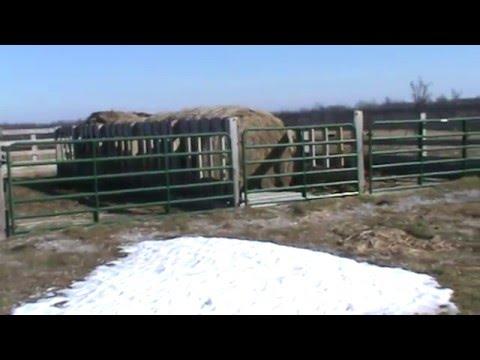 Cattle Winter Feeding Structure