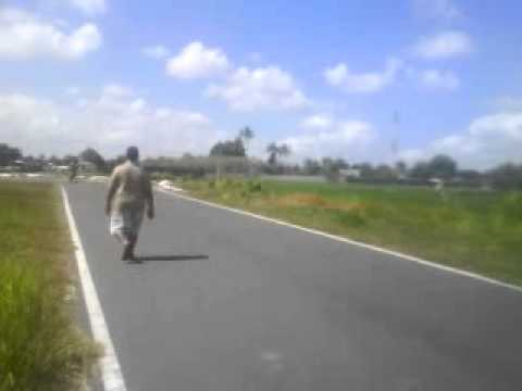 motor metic freestyle lombok Travel Video