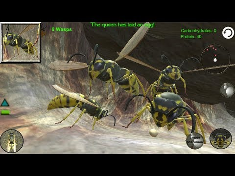 Wasp Nest Simulator - Insect and 3d animal game (by hksdev) / Android Gameplay HD