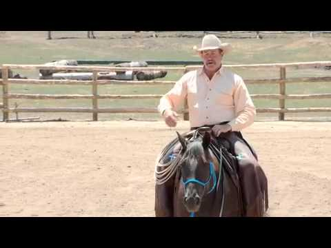 direct and indirect reins for control and communication while riding rh youtube com