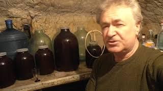 Домашняя вино из слив, сливовица-продолжение в 2019 году.