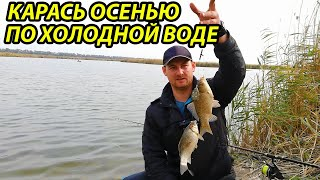 Рыбалка в октябре на карася,прикормка для холодной воды своими руками,рыбалка осенью,фидер осенью
