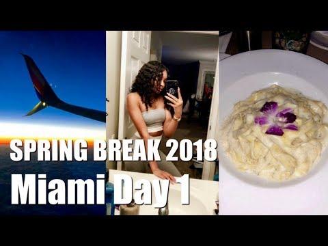 SPRING BREAK 2018 | MIAMI!!!!!!!!! | DAY 1 I MET DRAKE ?!