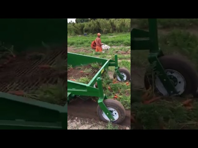 Uniekum3-small-1024x537 Videos