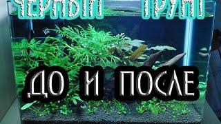 🐠🐟🐡  ЧЕРНЫЙ ГРУНТ В АКВАРИУМЕ  #техноканал