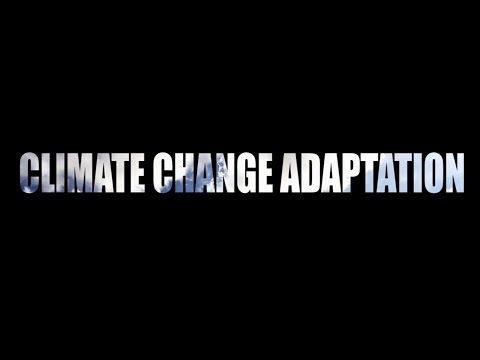 WSTF Documentary on Climate Change, Greening and Financing Nexus