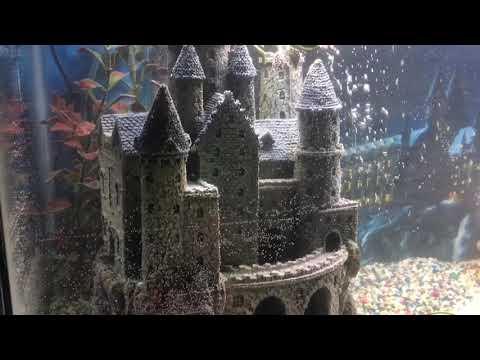 Harry Potter Theme Fish Tank Youtube