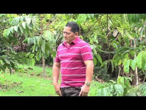 Musica ecuatoriana Nuestra culpa Bolero luis Alberto