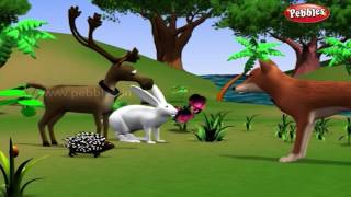 Rabbit and Hedgehog | পশু গল্প | 3D Moral Stories For Kids in Bengali | Animal Stories in Bengali
