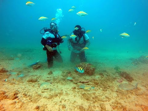 Scuba Diving At Charna Island - Scuba Club