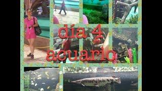 acompañame a MIS VACACIONES A BOCA DEL RIO acuario  dia 4 parte 1 Thumbnail