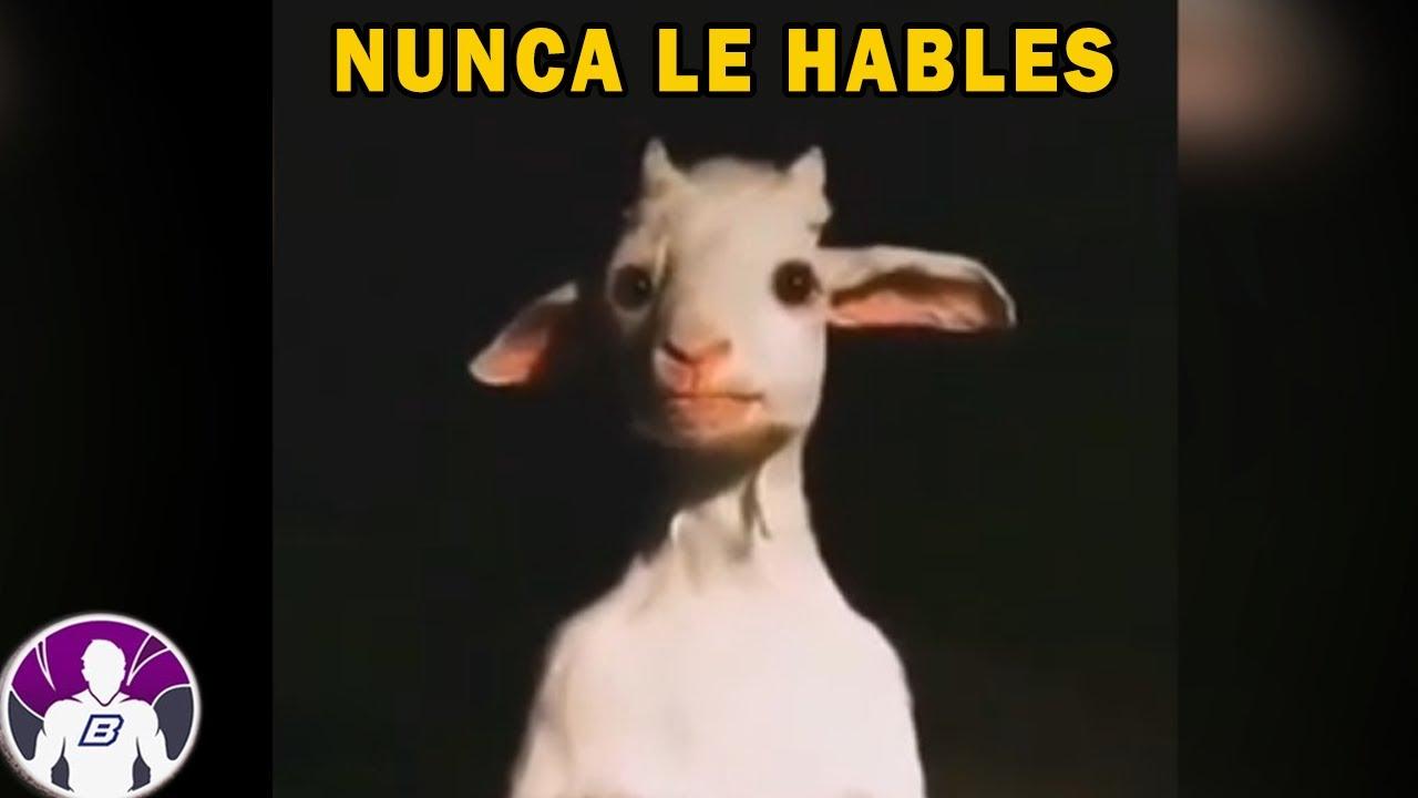 Download Si Se Te Aparece No Le Hables: 4 Vídeos Que No Te Dejarán Dormir