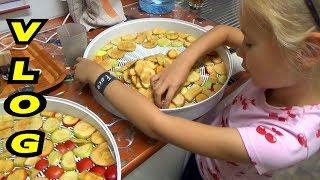 Яблоки,груши и кабачки повсюду!➤ Заготовки на зиму