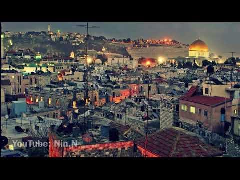 في حزن وسع المدى - فلسطين