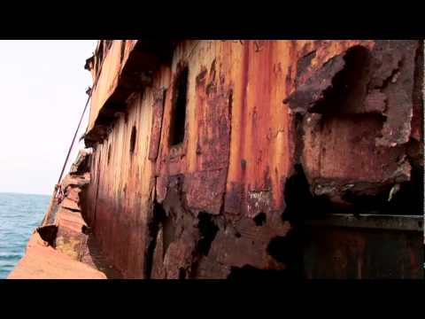 ALL AT SEA-The Abuse of Human Rights on Illegal Fishing Vessels .
