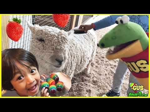 Kids Strawberry Picking at the Farm with Ryan ToysReview!