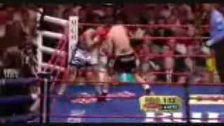 Miguel cotto vs antonio margarito ( HIGHLIGHT) WAR