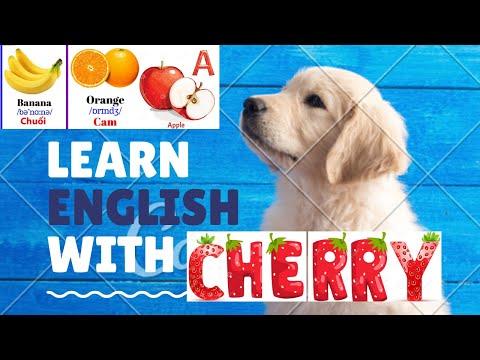Học tên trái cây bằng tiếng anh và tiếng việt