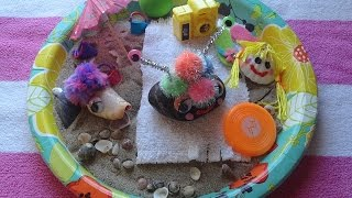 Pet Rock Beach: How To Make A Beach For Your Pet Rock!