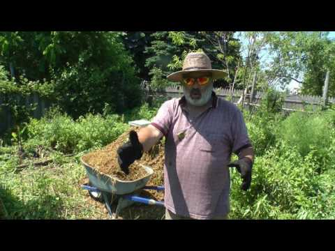 The Big C in Permaculture