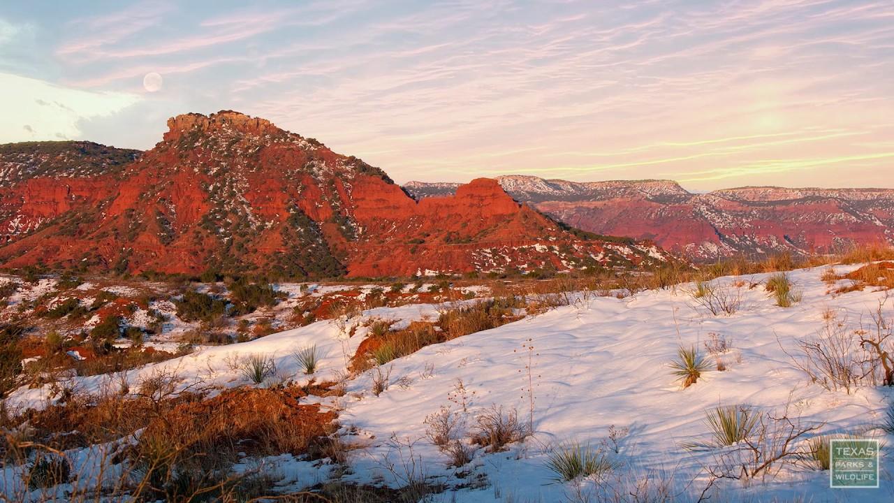 postcard texas landscape