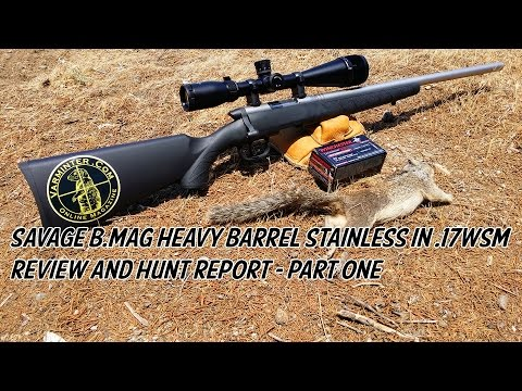 Savage B.MAG Heavy Barrel Stainless in 17WSM Review and Hunt Report - Part One