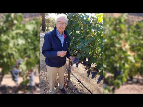 A Wine Industry Icon: Warren Winiarski