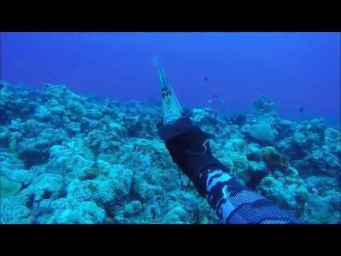 Spearfishing Guam New Beginnings