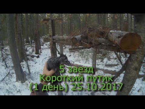 охотники за пушниной на телеканале охота и рыбалка