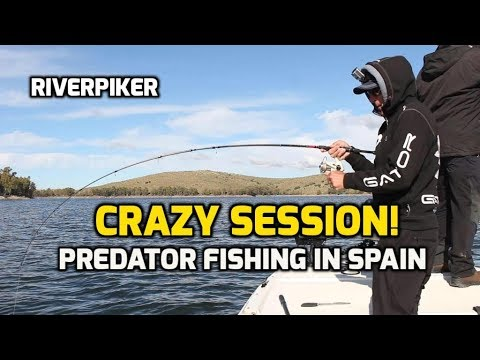 Crazy Session - Predator Fishing In Spain - (video 226)