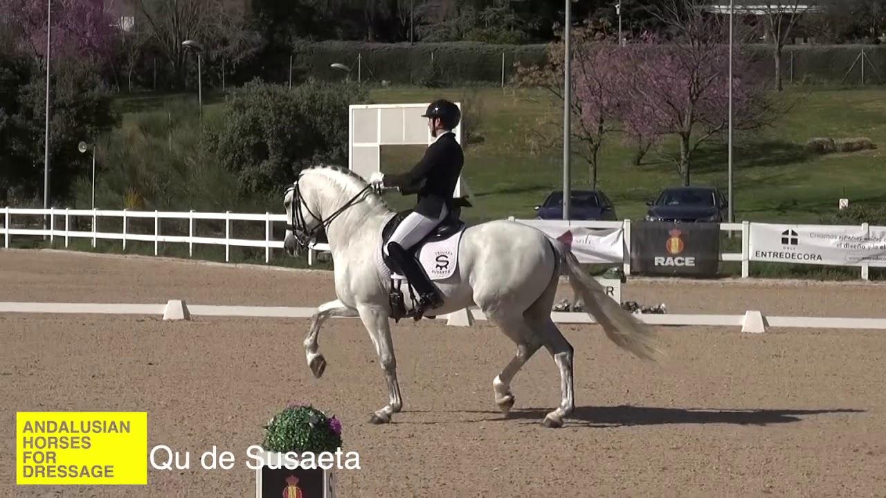 Sélection espagnole des Championnats du Monde Jeunes Chevaux