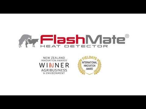 FlashMate Intro