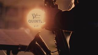 You Fly by the Stéphane Mercier Quintet
