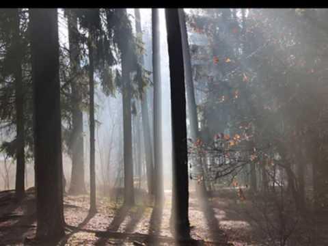 Das Morgenrot / Am kühlenden Morgen