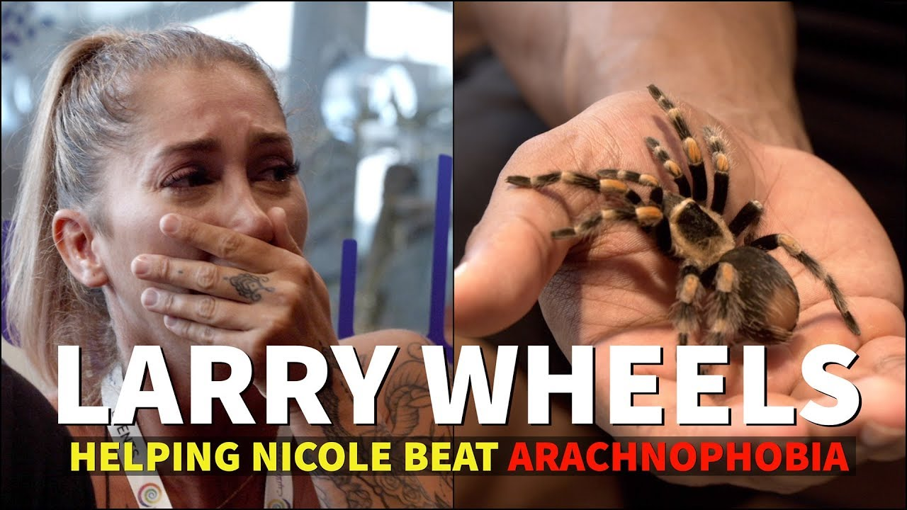 GIANT SPIDER BRINGS HER TO TEARS!