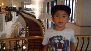 noah tube the kids review marriott resort and spa gold coast surfers paradise